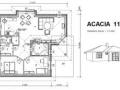 acacia11-2a